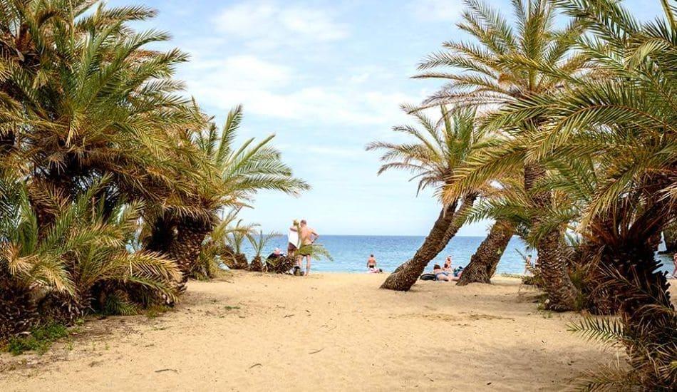 path-to-palm-beach
